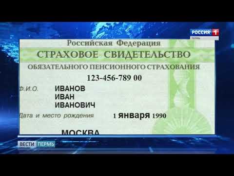 В России отменили бумажные носители СНИЛС