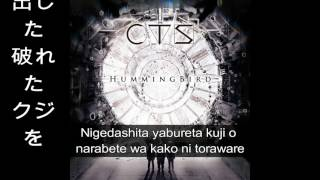 CTS - Hummingbird (Lyric)