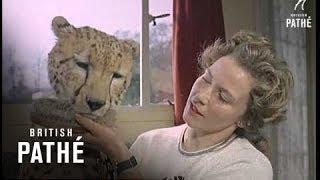 Mary Chipperfield - Animal Trainer  Aka Woman Animal Trainer (1964)
