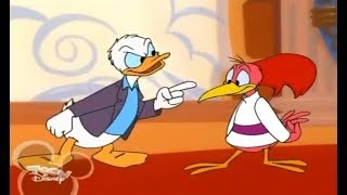 Disney's House Of Mouse Season 3 Episode 5 Donald And The Aracuan Bird