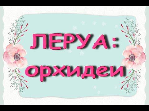 """Леруа:ЧУДЕСНЫЙ завоз ОРХИДЕЙ!""""Фантом"""",05.12.20,ТЦ""""Космопорт"""",Самара."""