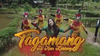 Download lagu Rayola Tagamang Di Nan Kariang Mp3