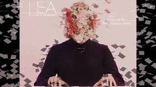 Lea feat. Patz&Grimbard - kennst du das (plusminuseins remix)