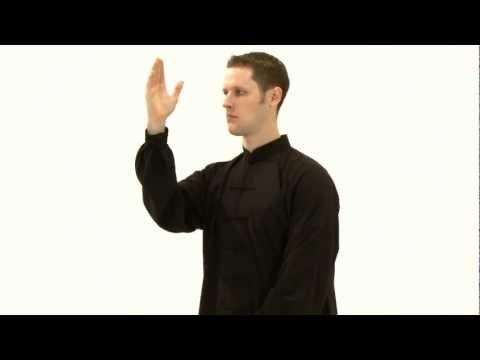 Chapitre 1: Quelques mouvements de tai-chi pour réduire le stress