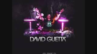 New 2010 David Guetta feat. Akon - Life of a Superstar