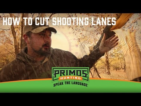 How to Cut Shooting Lanes video thumbnail