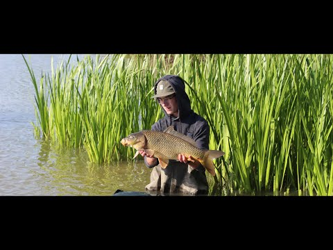 Carpfishing - Freedom | JHVIDEOPRODUCTION | Holubcův rybník