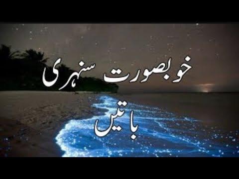 Sunehri Alfaaz in urdu /Achi batain/ Piyari Batain in Urdu/Hindi 👍💚😍
