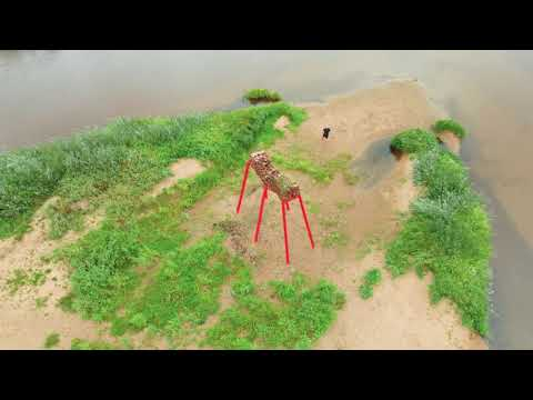 Sarkanā mežskudra Valmierā