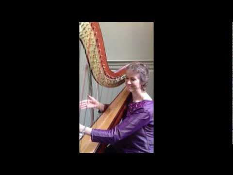 The Worcestershire Harpist Video