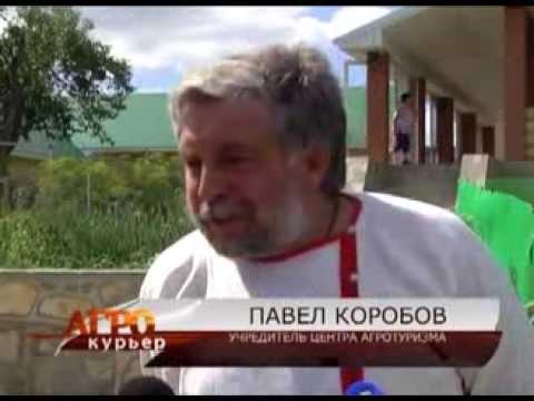 В Борском районе намерены развивать сельский туризм