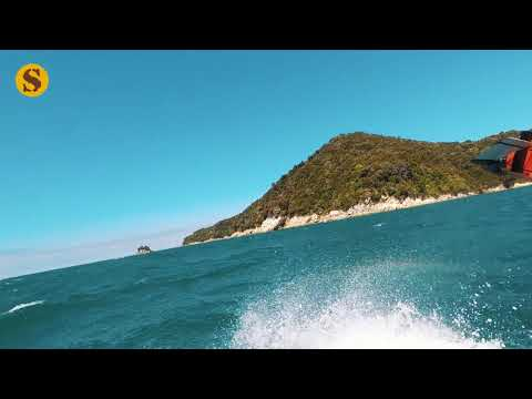 Nieuw-Zeeland video