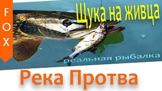 Рыбалка в июле на реке протве