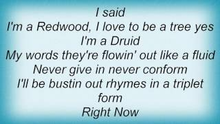 311 - Right Now Lyrics