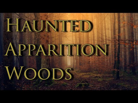 Haunted Woods: Hear The Spirits Speak