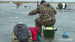 Ловля рыбы на карповском водохранилище 2020