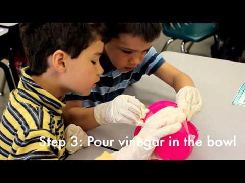 Kindergarten Penny Experiment