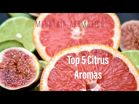 TOP 5 Citrus Aromas for Creating Fragrance at Home