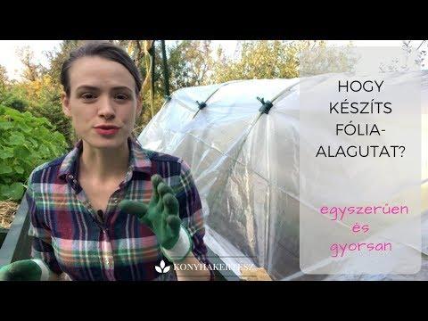 Hasnyálmirigyrák fiatal nő