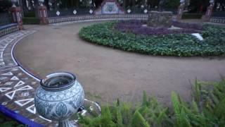 Ботанический Сад в Малаге. Испания