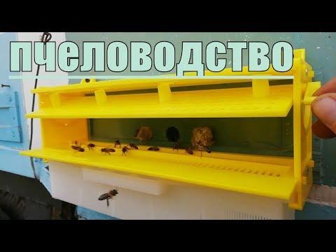 Пчеловодство 21,03,2019 Обзор и установка пыльцесборника