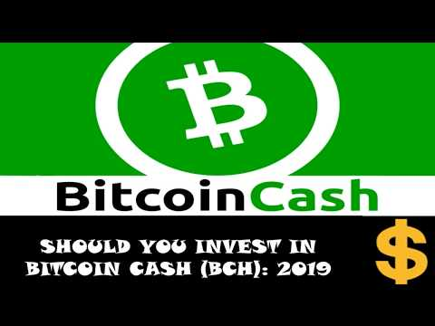 Should i invest in bitcoin or bitcoin cash