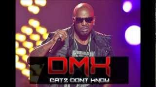Dmx - Catz Don't Know