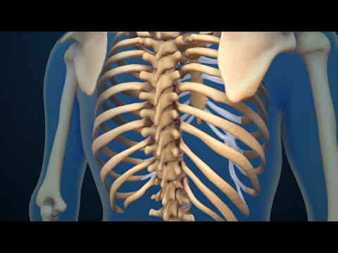 Kifoz una spina dorsale di reparto lombare a bambini