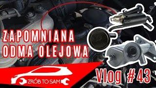Odma olejowa objawy , diagnoza - omówienie Vlog #43