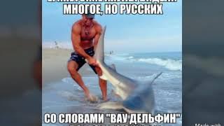 Картинки приколы .и музыка Наше лето2014xit