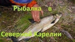 Диалоги о рыбалке - рыбалка в карелии