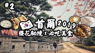 【韓國首爾🇰🇷2019】櫻花🌸美食😋水原華城、新沙林蔭大道、弘大燒肉放題、Egg Drop | 自由行旅遊攻略