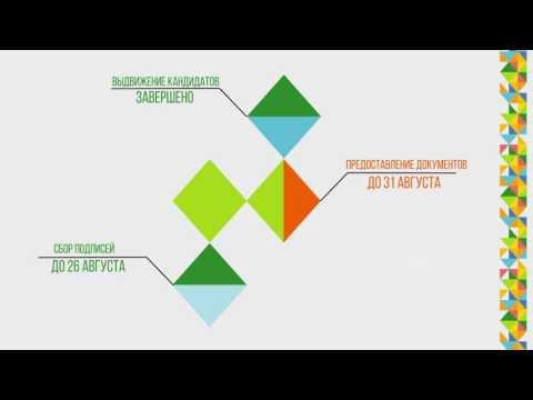 Информация об этапах избирательного процесса (на русском)