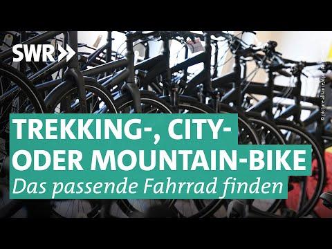 Fahrräder - Preiswert, nützlich, gut?