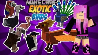 COMO DOMESTICAR PÁSSAROS DO EXOTIC BIRDS  -TUTORIAL MINECRAFT MOD #25