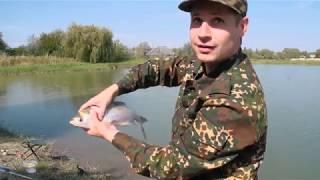 Платная рыбалка в ставропольском крае пруды