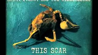 Angry Johnny And The Killbillies-This Scar