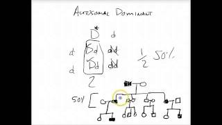 Introduction To Autosomal Dominant Pedigree - USMLE Tutorial
