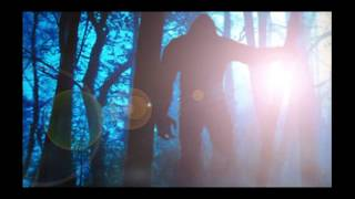 SASQUATCH DOCUMENTARY