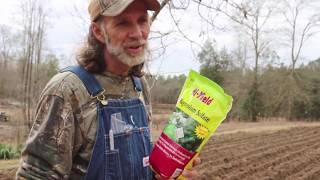 Planting Potatoes 101