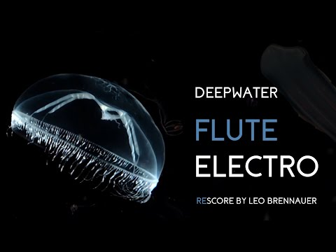 Deepwater Flute Electro | Hyperflute, Recordings | Leo Brennauer