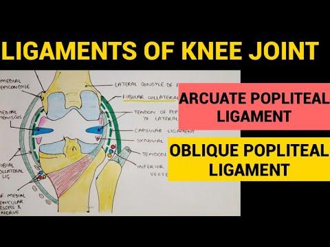 Perspective pentru tratamentul artrozei