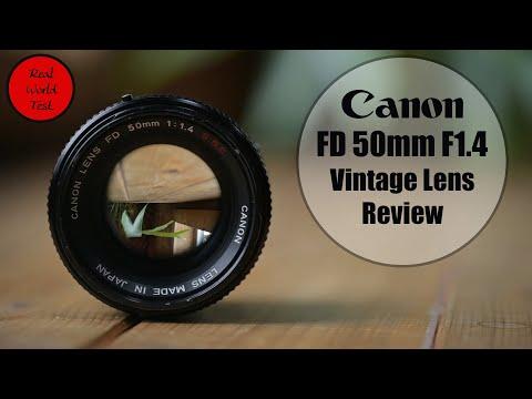 Best Canon FD Lenses in 2021: 6 Legacy Lenses