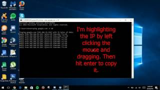 How to Ping an IP or Domain Address in Windows 10