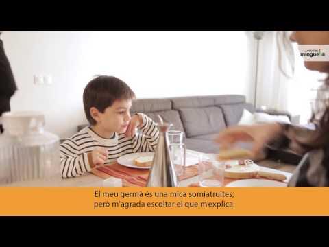 Video Youtube Minguella