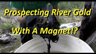 Prospecting River Gold With A Magnet!?