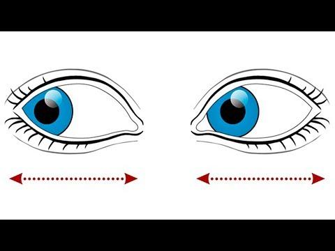 Очки на овальное лицо для зрения