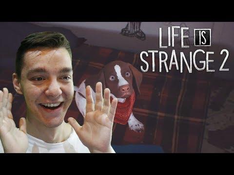 Life is Strange 2 - NOVÝ DOMOV | #8