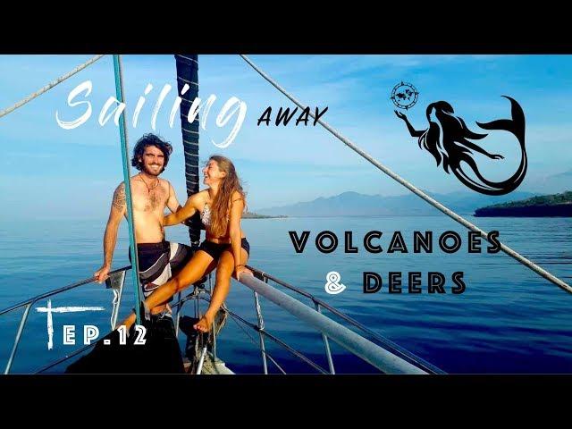 Sailing AWAY between volcanoes feat. swimming DEERS !! Ep. 12 Indonesia , Sagar Rani Odyssey