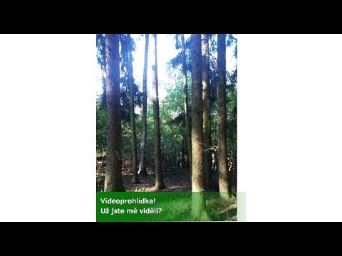 Video Prodej pozemku 10260 m², Lašovice